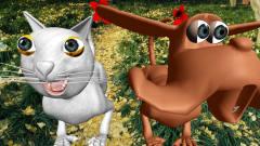 狗狗猫猫搞笑视频,搞笑表情包