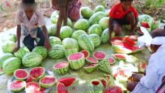 """印度夏天高达50度,小贩街边卖""""西瓜饼"""",游客"""