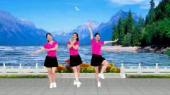 广场舞《我愿等你十八年》大众娱乐健身舞 简单