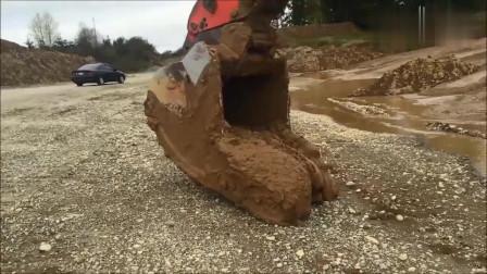 搞笑动物:挖掘机工作时发现地下有动静,一铲
