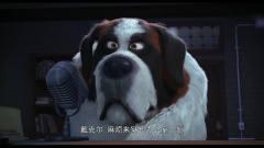 狗狗的疯狂假期:狗狗接二连三的逃狱,每一次