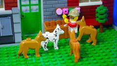定格动画-乐高城市故事之和宠物狗狗搞笑生活的