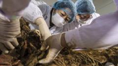 """考古队竟挖出""""活女人"""",皮肤还有弹性,呻吟"""