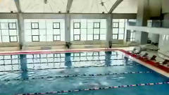 总裁和女员工比赛游泳,怎料美女脱下橘色外套