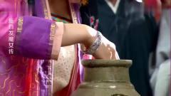 美女为了一块玉,直接把手放进有毒蛇的罐子里