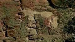 中国第一个女将军,考古队发现墓中陪葬品,直