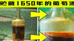 这瓶葡萄酒,已经保存了数千年,考古学家也感