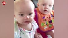 双胞胎宝宝搞笑瞬间