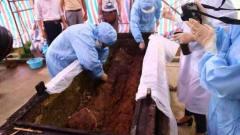 考古专家打开慈禧的棺木,发现一个神秘包裹,