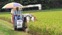 日本人发明水稻收割机,一天能割30亩地,中国农