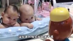 搞笑视频:这小猴子一定很好玩,要不这哥俩怎