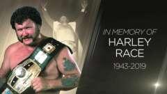 体育娱乐行业真正的硬汉!纪念WWE传奇巨星哈利