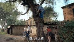 姐姐和男友樹下約會,不料三個弟弟使壞爬樹上