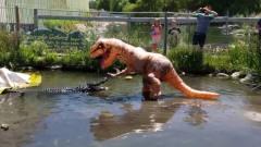 男子假扮霸王龙,恶搞水中的鳄鱼,鳄鱼:兄弟