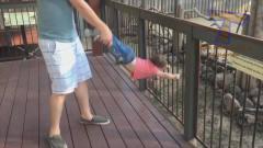 国外小孩子在动物园的各种搞笑视频合辑,太好