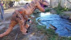男子穿上恐龙服,恶搞池中的鳄鱼,接下来憋住