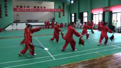 海口市第九届老年人体育运动会太极拳比赛  1秀
