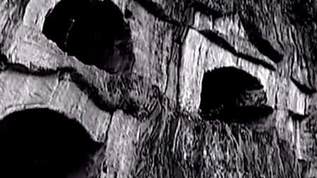 放牛小伙发现18座墓穴,记者和考古学家合作,发