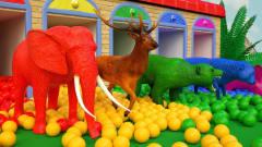 好搞笑!动物园的动物竟然逃跑了!它们躲在了