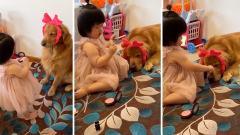 搞笑视频集锦:当只狗也不容易!为了这个家,