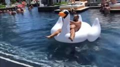 搞笑视频,不就玩水骑个鸭子这么简单,你非上