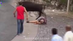 搞笑视频:平常都是人去斗牛,这次看牛怎么斗