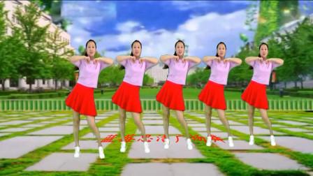网络热门DJ《平凡之路》时尚32步 动感活力 魅力