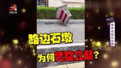 家庭幽默录像:螳螂臂力大无穷,你可能还只停