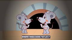 悬疑动画《鲜肉》:奇怪,我怎么闻到了肉的味