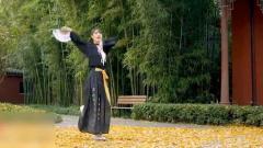 2019最火抖音舞蹈国风舞蹈《浪人琵琶》,热门舞蹈视频
