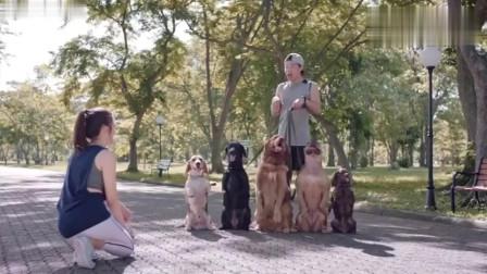 《创意广告》你以为我真的喜欢狗吗我只是想追