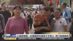 视频 上海动物园: 长假前四天接待十万余人 热门