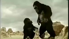 《创意广告》泰国广告之猩猿崛起,就问你服不