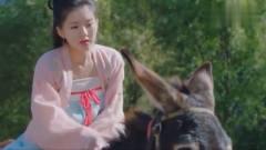 古装美女骑驴,竟跟驴讲起道理来,软的不行来