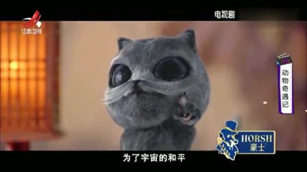 家庭幽默录像:萌宠奇遇记,动物们的搞笑时刻