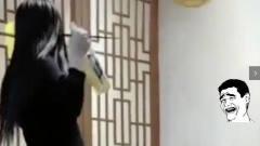 搞笑视频:请欣赏一位醉酒美女的精彩舞姿,哎