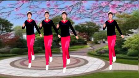 流行歌曲《芒种》姑娘简单的几步跳得好飘逸,