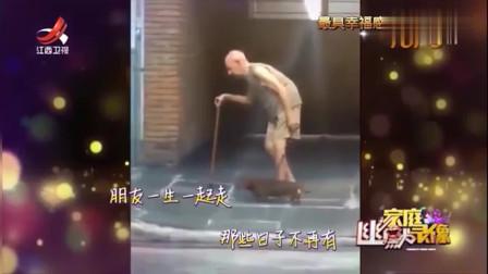 家庭幽默录像:老人拄着拐杖步履蹒跚,狗狗用