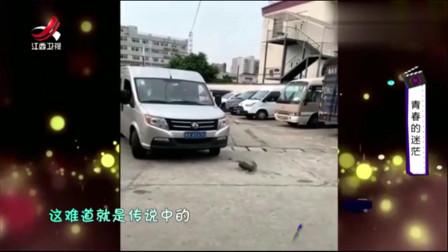 家庭幽默录像:司机路上遭遇另类碰瓷!这摆明