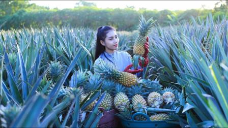 泰国美女在果园里采摘菠萝,最新鲜的食材做美