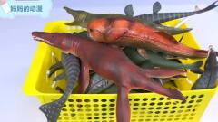 蛇龙鲤鱼鲨鱼水中游 海洋动漫
