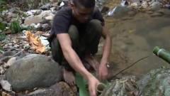 印度小伙在树洞里寻找美食,没想到制作后吃的