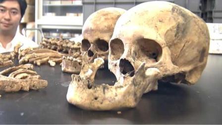 东京奥运主场馆地下挖出187件人骨,以前可能是墓地