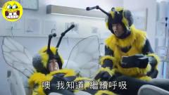 蜂蜜创意广告排行榜第一位,泰国广告也得服!
