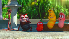 爆笑虫子:虫子们都在闲聊,结果出现一美女,