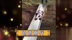 家庭幽默录像:孩子悠哉躺在滑滑梯,不想睁眼
