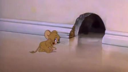 猫和老鼠:杰瑞鼠开始打扮,竟直接亲上美女猫
