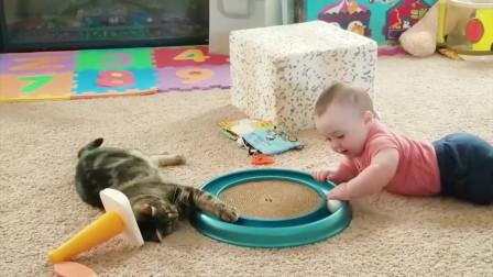 萌娃萌宠欢乐多,猫咪和宝宝在一起太欢乐了,