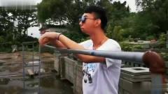 搞笑视频:我看视频一般不笑别人,除非忍不住