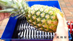 """恶搞实验:将""""菠萝""""放入切割机!儿子看见后"""